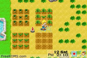 Harvest Moon - More Friends Of Mineral Town Screen Shot 2